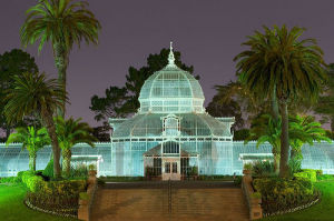Gala Under Glass @ Conservatory of Flowers | San Francisco | California | United States