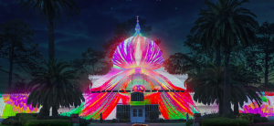 San Francisco Conservatory of Flowers Illumination, Red Carpet Bay Area