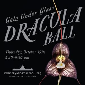 Dracula Orchid Ball Gala Under Glass @ Conservatory of Flowers | San Francisco | California | United States